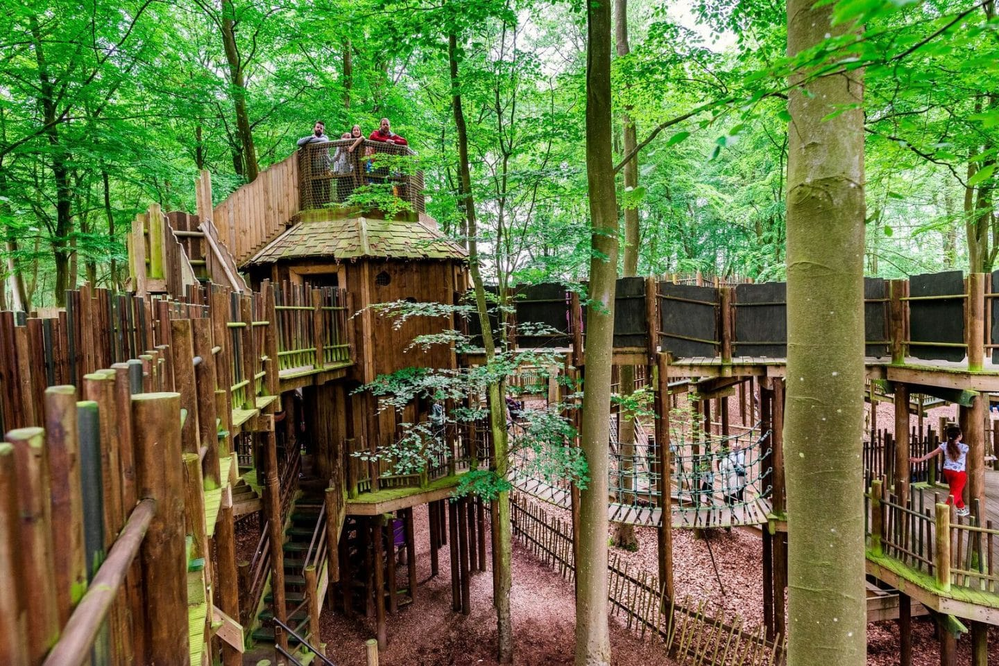 A photo of a wooden outdoor maze, one the BeWILDerwood attractions.