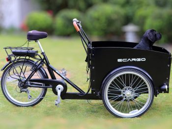 An e-cargo bike.